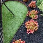 Boodle Concepts - St Kilda Rd garden design & landscaping