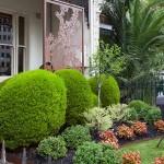 Boodle Concepts - St Kilda Rd garden