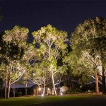 Outdoor low wattage garden lighting in Melbourne
