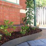 Garden by Boodle Concepts - Prahran landscape design Melbourne