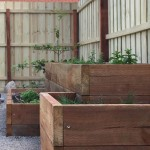 Boodle Concepts - Moonee Ponds garden