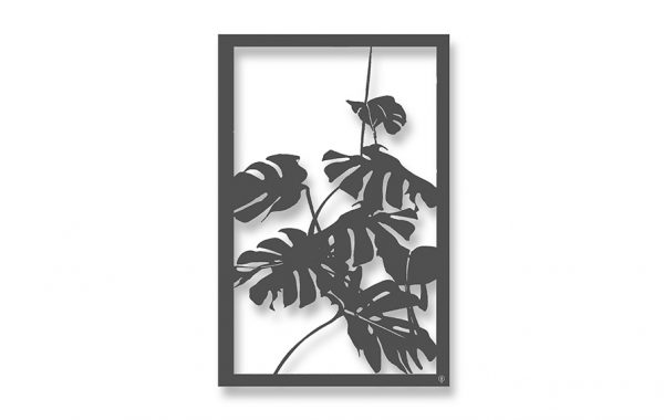 Philodendron garden screen